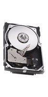 300GB LVD Ultra320 SCSI 10000RPM 3.5in x 1in 80p 320MB/s HDD