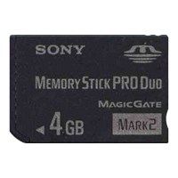 Sony MS-MT4G BXC 4GB 10p Memory Stick Pro Duo Mark 2 w/o Adapter