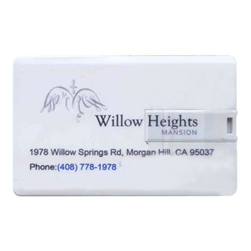 Gigaram U830-8GB-LI-WILLOW 8GB USB 2.0 Pendrive Rectangular Credit Card Style with Custom Logo Willo