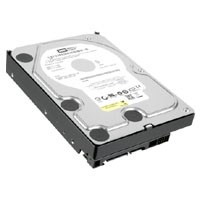 Western Digital WD2502ABYS HKR 250GB SATAII 7200RPM 3.5in...